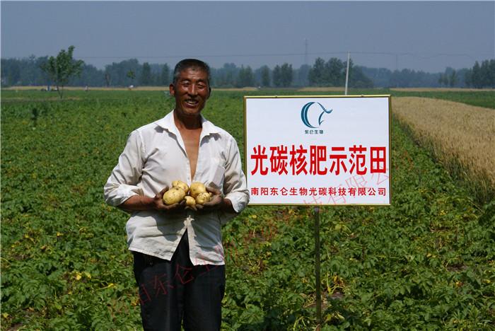 南阳市宛城区黄太岗星空彩票官方ios土豆产量翻倍